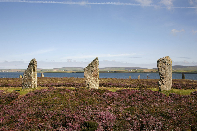 P. Tomkins / Scottish Viewpoint